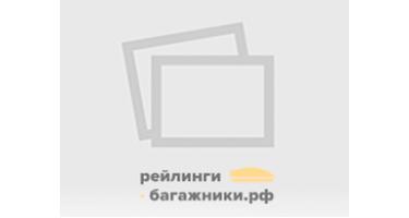 Рейлинги TAMSAN на Fiat DOBLO 2010— Арт. 2524902
